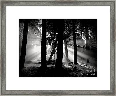 Framed Print featuring the photograph Morning by Irina Hays
