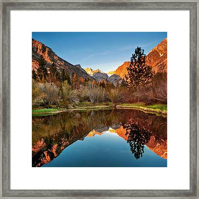 Morning Light Framed Print by Aron Kearney