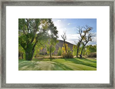 Morning Light At The Rolling Green Cc Framed Print