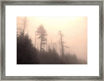 Morning Light In The Appalachian Mountains Framed Print