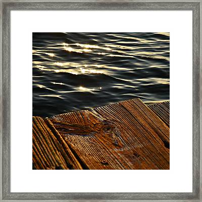 Morning Light Framed Print by Laura Fasulo