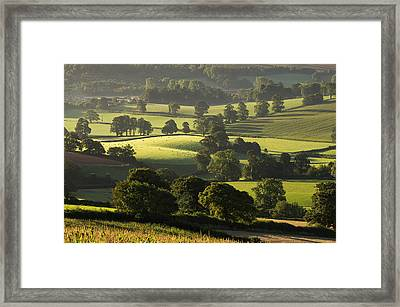 Morning Light On Fields Framed Print