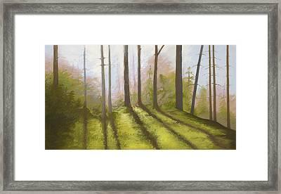 Morning Light On The Ledge Framed Print by Bruce Richardson