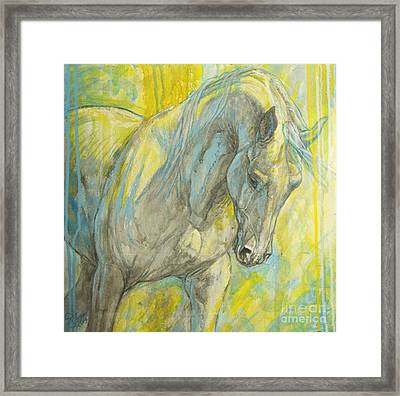 Morning Light Framed Print by Silvana Gabudean