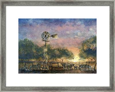 Morning Light Framed Print by Tim Oliver
