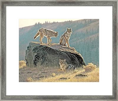 Morning Lookouts Framed Print by Paul Krapf