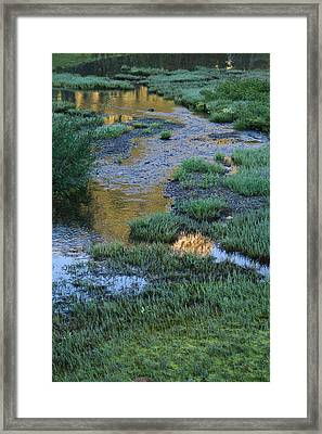 Morning Magic Tipsoo Lake Wa Framed Print by Cheryl Perin