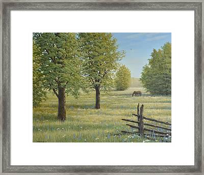 Morning Meadow Framed Print by Jake Vandenbrink