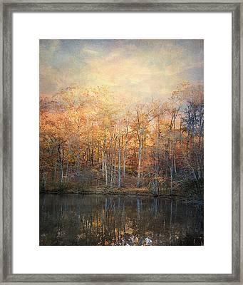 Morning Meditation Framed Print by Jai Johnson