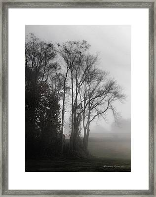 Morning Mist Framed Print by Aleksander Rotner
