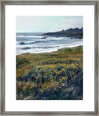 Morning Mist At Ocean Shoreline Framed Print by Elaine Plesser