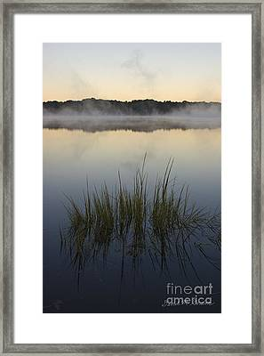 Morning Mist At Sunrise Framed Print by David Gordon