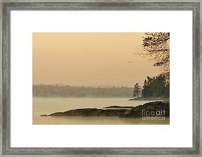 Morning Mist Framed Print by Christopher Mace
