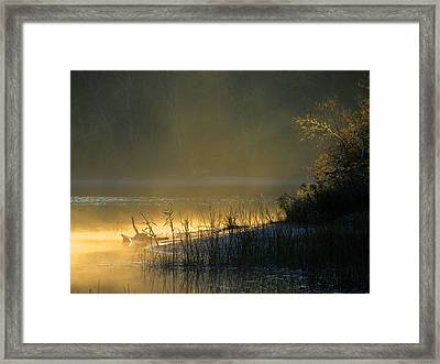 Framed Print featuring the photograph Morning Mist by Dianne Cowen