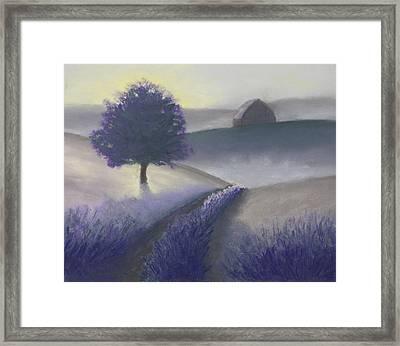 Morning Mist Framed Print by Garry McMichael