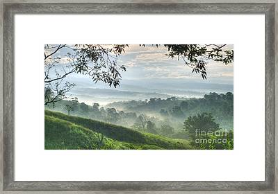 Morning Mist Framed Print by Heiko Koehrer-Wagner
