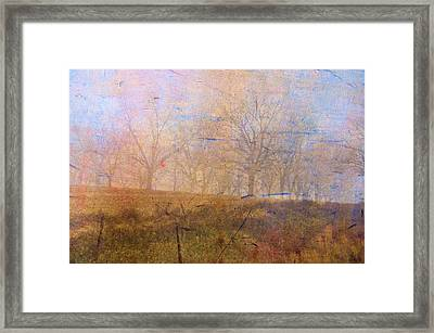 Morning Mist Framed Print by Jan Amiss Photography