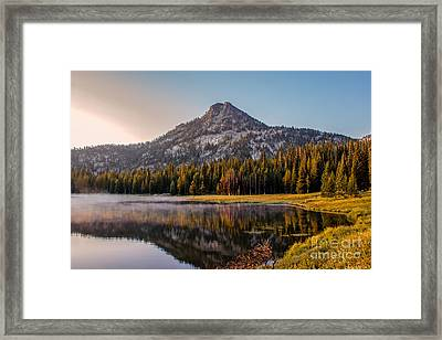 Morning Mist Framed Print by Robert Bales