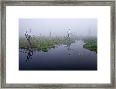 Morning  Mist Framed Print by Robert Olshansky