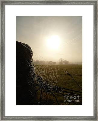 Framed Print featuring the photograph Morning Mist by Vicki Spindler