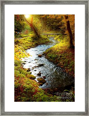 Framed Print featuring the photograph Morning Nature by Boon Mee