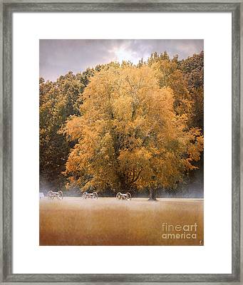 Morning On The Battlefield Framed Print by Jai Johnson