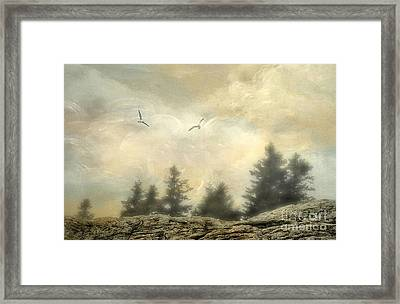 Morning On The Coast Framed Print by Darren Fisher