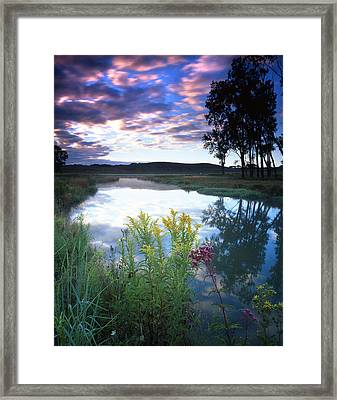 Morning On The Creek Framed Print by Ray Mathis