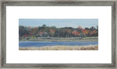 Morning On The Maurice River Framed Print