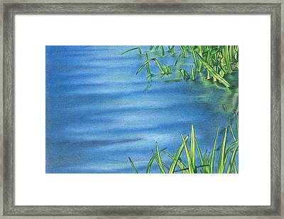 Morning On The Pond Framed Print by Troy Levesque