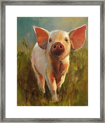 Morning Pig Framed Print