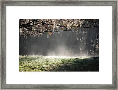 Morning Power Framed Print