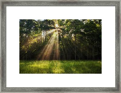 Morning Radiance Framed Print by Andrew Soundarajan