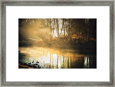 Morning Rays Framed Print by Julie Palencia