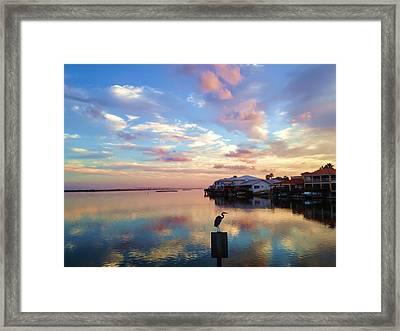 Morning Reflections Framed Print by Debra Martz