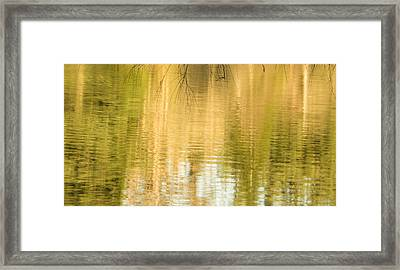 Morning Reflections Framed Print by Marilyn Wilson