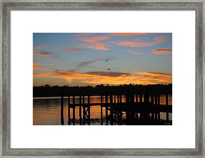 Framed Print featuring the photograph Morning Reflections by Michele Kaiser