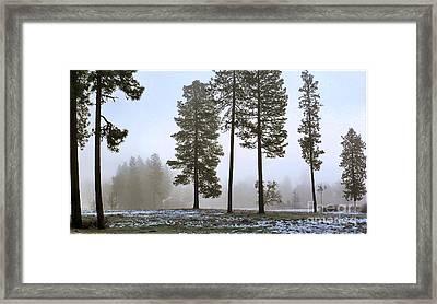 Morning Rime Framed Print