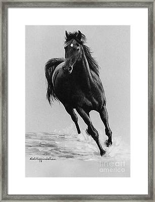 Morning Romp Framed Print