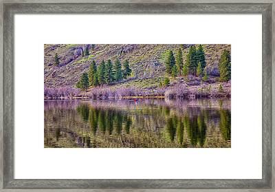 Morning Rowing Framed Print by Omaste Witkowski