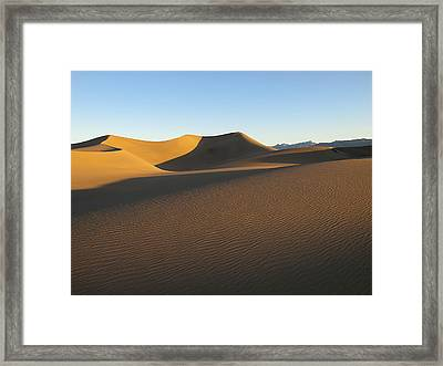 Framed Print featuring the photograph Morning Shadows by Joe Schofield