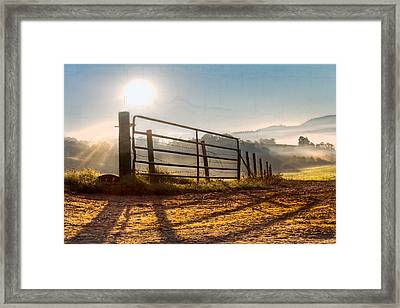 Morning Shadows Framed Print