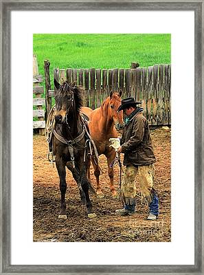 Morning Skitters Framed Print