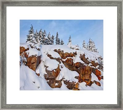 Morning Snow Framed Print by Darren  White