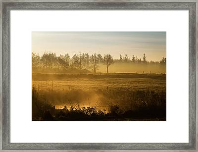 Morning Softly Framed Print by Odd Jeppesen