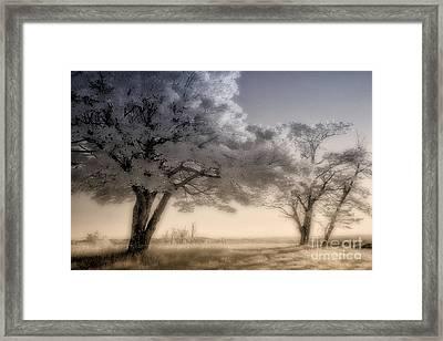 Morning Softness II - Blue Ridge Parkway Framed Print by Dan Carmichael