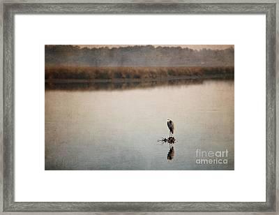 Morning Solitude Framed Print by Joan McCool