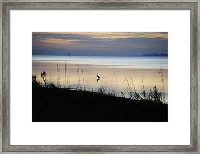 Morning Solitude Framed Print by Michele Kaiser