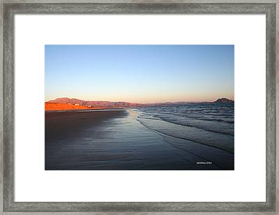 Morning Stroll Framed Print
