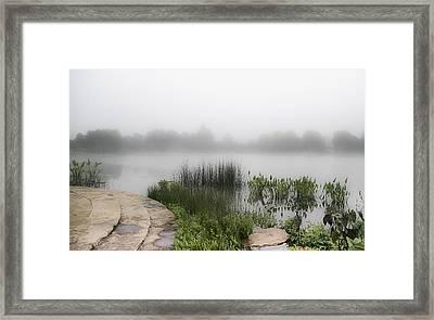 Morning Summer Mist Framed Print